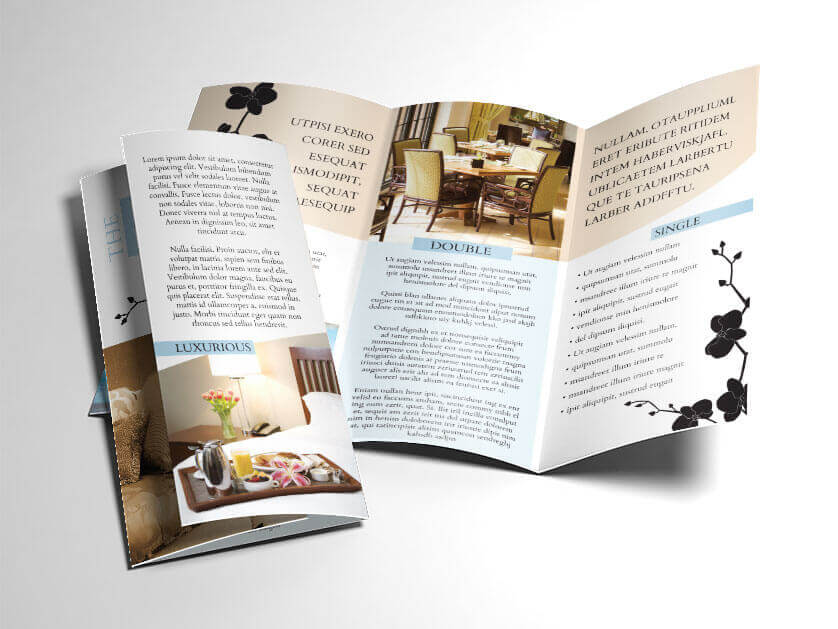 Indesign Brochure Templates Free Template Download